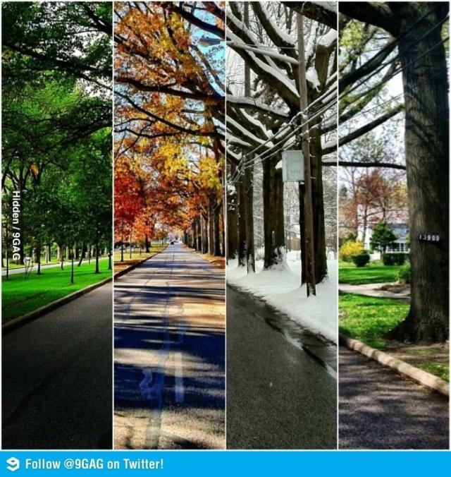 4 estaciones