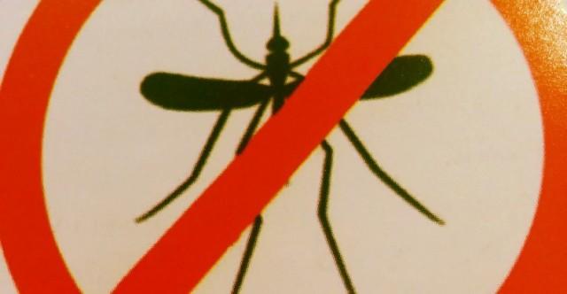 mosqui